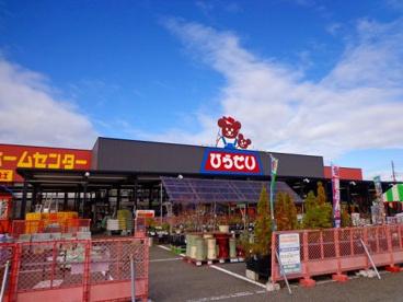 ひらせいホームセンター新崎店の画像1