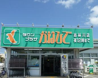 タウンプラザ志林川店の画像1