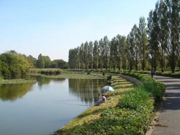 水元公園の画像1