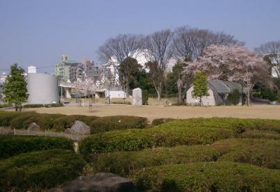 湘南台公園の画像1