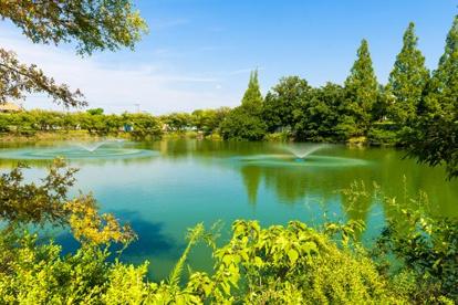 鶴山台志保池公園の画像1