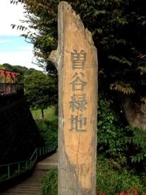10号曽谷緑地の画像1
