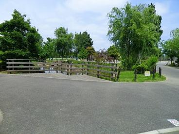 市川市大洲防災公園の画像1