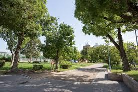 真田山公園の画像1