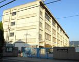 八尾市立上之島小学校