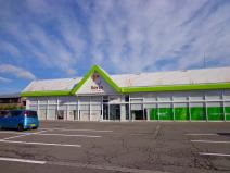 セリアウオロク緑店