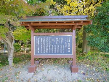 白堤神社(しろとりじんじゃ)の画像2