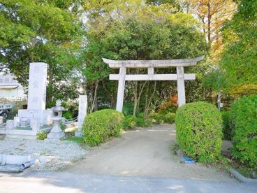 白堤神社(しろとりじんじゃ)の画像3
