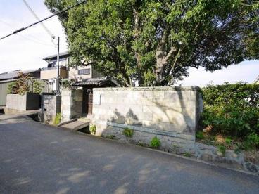 穴穂神社(田町)の画像4