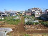 末長市民農園