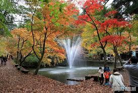 加茂山公園の画像1