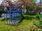 杉ケ町公園