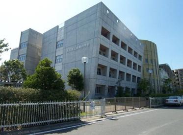 市川市立妙典小学校の画像1