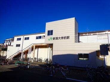 新潟大学前駅の画像1