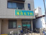 滝台ヒフ科