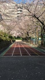 名古屋市立東桜小学校の画像4