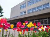 札幌市立新陽小学校