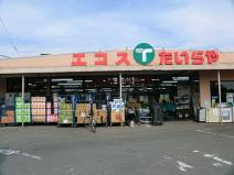 エコス上野田店