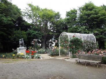 須和田公園の画像2