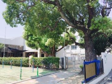 いづみ保育園の画像2