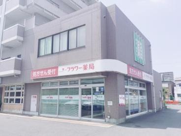 フラワー薬局金岡公園前店の画像1