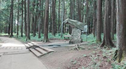 龍ケ崎森林公園の画像1