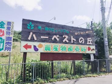 堺・緑のミュージアム ハーベストの丘の画像1