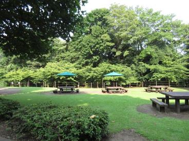 城山史跡公園の画像1