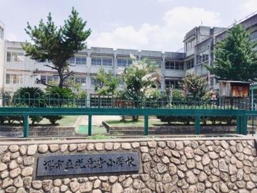 堺市立光竜寺小学校の画像2