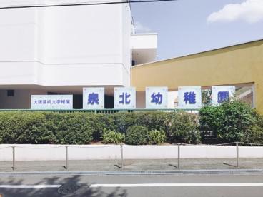 大阪芸術大学 附属泉北幼稚園の画像3