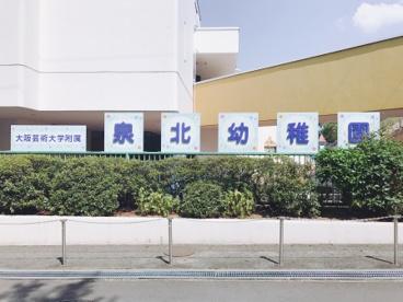大阪芸術大学 附属泉北幼稚園の画像5