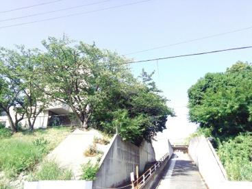 堺市立桃山台小学校の画像3
