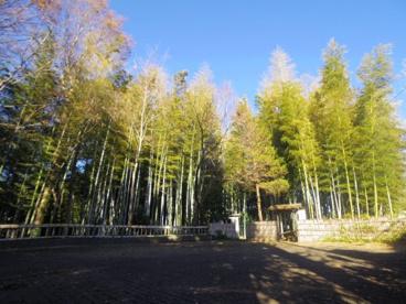 竹林公園の画像1