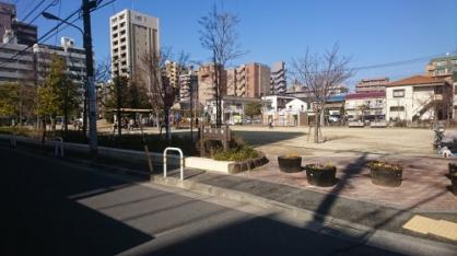 仲町公園の画像1