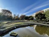練馬区立秋の陽公園