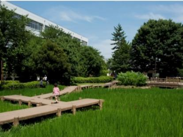 練馬区立秋の陽公園の画像1