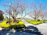 横須賀市 はまゆう公園