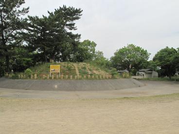 岸和田市立久米田公園運動広場の画像1