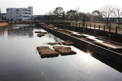 家原大池公園の画像3
