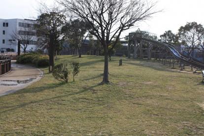 家原大池公園の画像5
