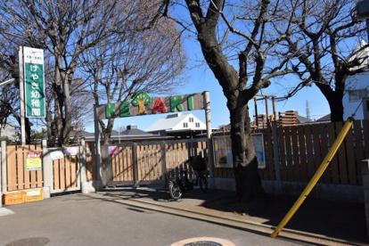 国分寺けやき幼稚園の画像1