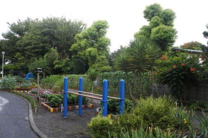 中丸子南緑道の画像1