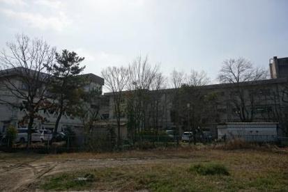 天理市立櫟本小学校の画像1