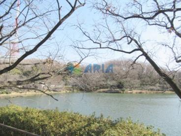 三ツ池公園の画像5