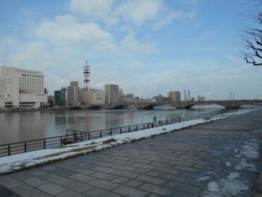 信濃川やすらぎ堤の画像1