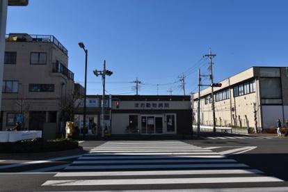 まお動物病院の画像1