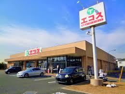 エコス 市川島尻店の画像1