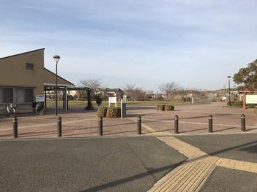 坪井近隣公園の画像1
