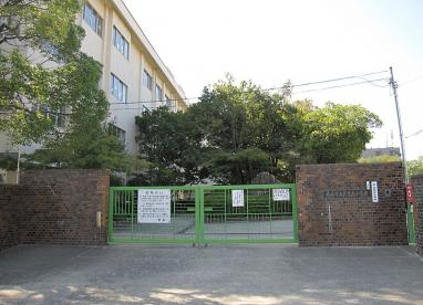 武庫庄小学校の画像1