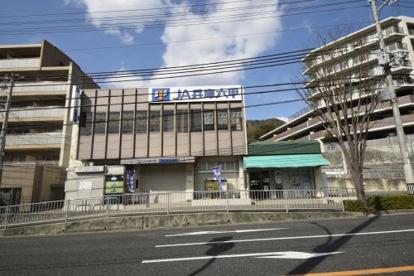 JA兵庫の画像1